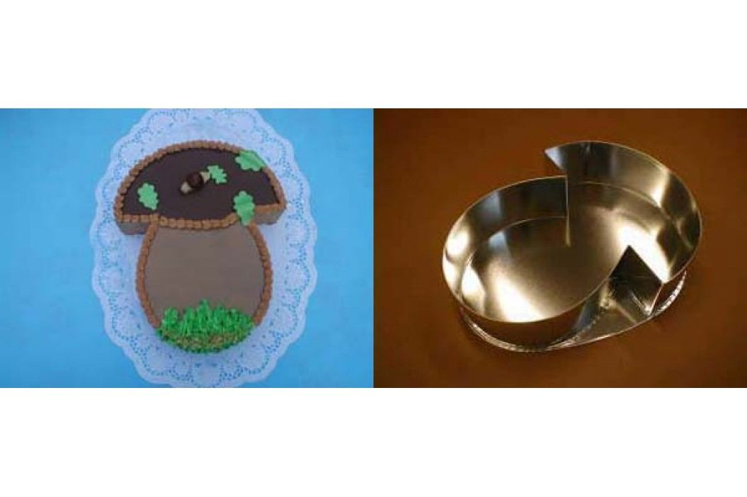 Felcman dortová forma houba