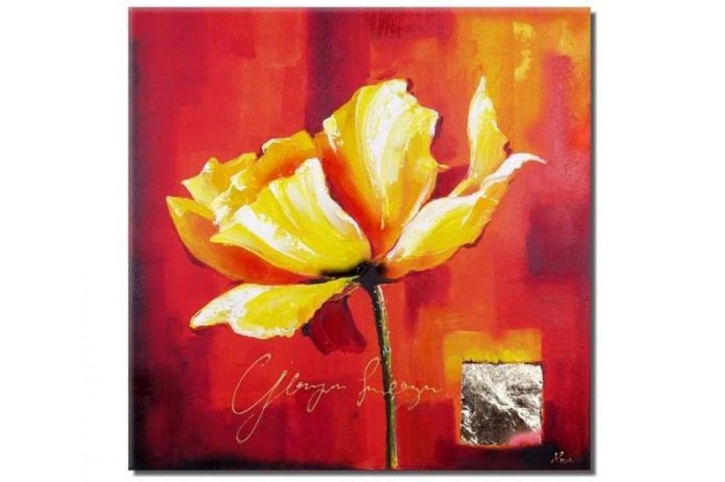 Žlutooranžový květ na červeném pozadí