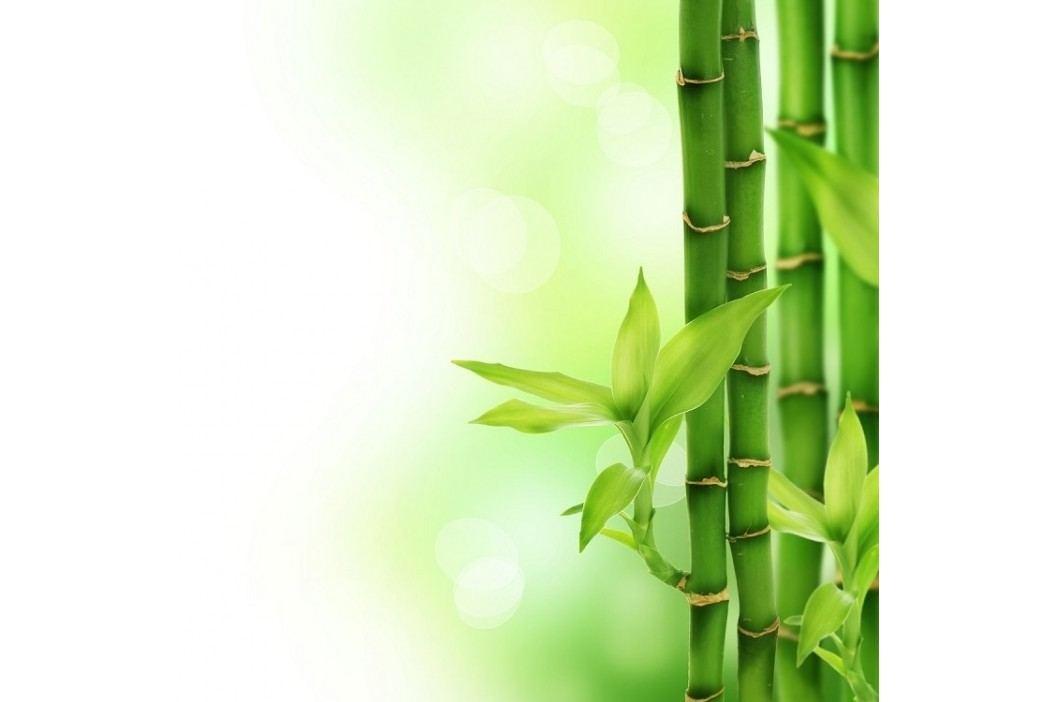 Viscopur Matracová podložka Bamboo, 90 x 200 cm