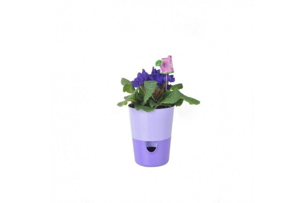 Samozavlažovací květináč Rosmarin, fialová, Plastia