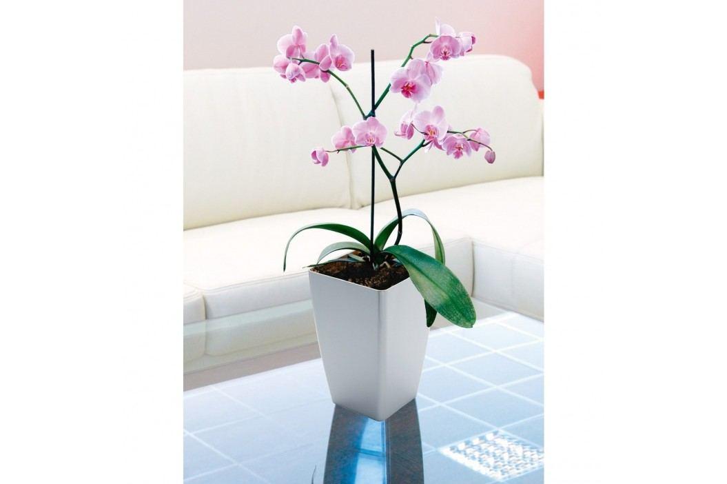 Květináč MIMOSA pro orchidej, bílá, 15 x 15 cm, Plastia