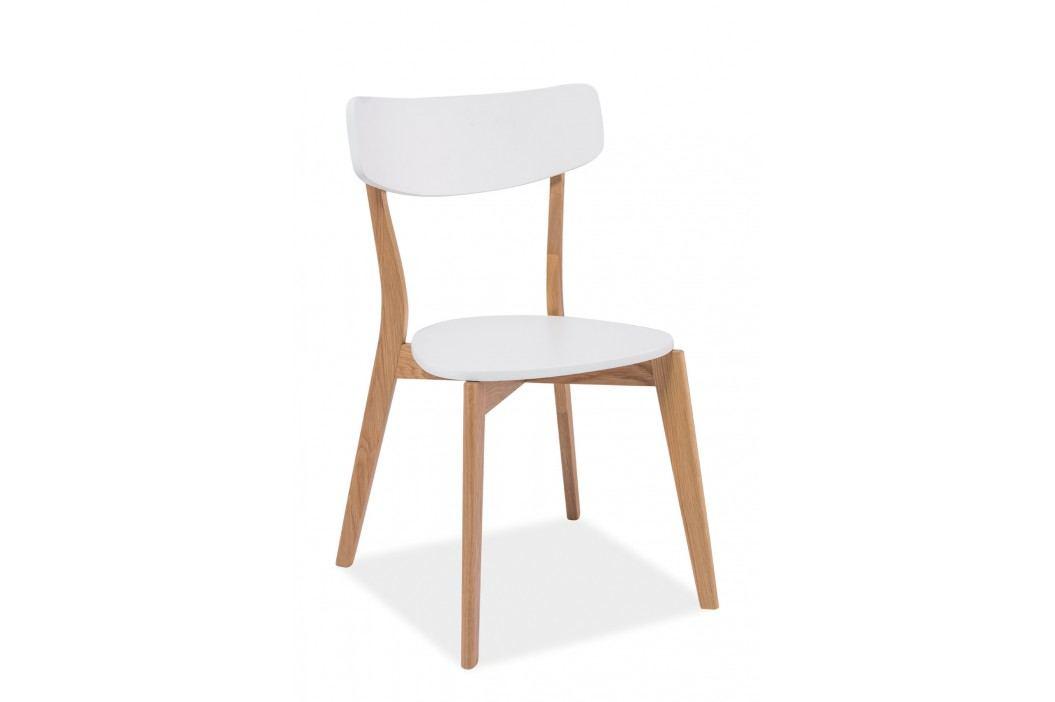 Jídelní židle - Signal - Mosso (dub + bílá)
