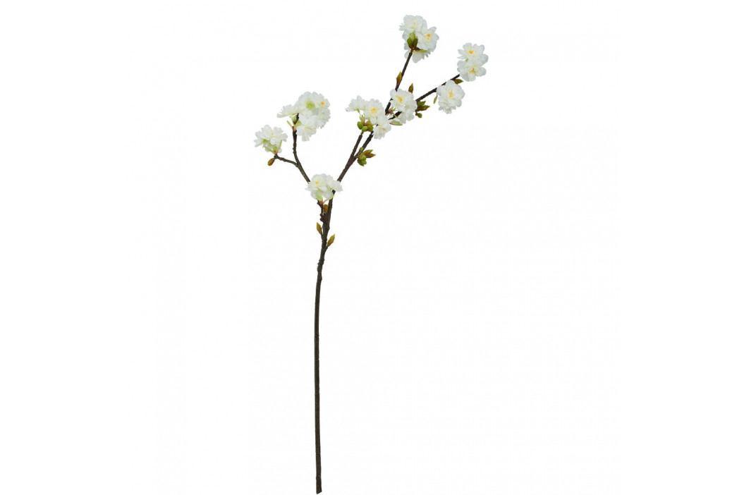 FLORISTA Větvička kvetoucí třešeň 15 cm - krémová
