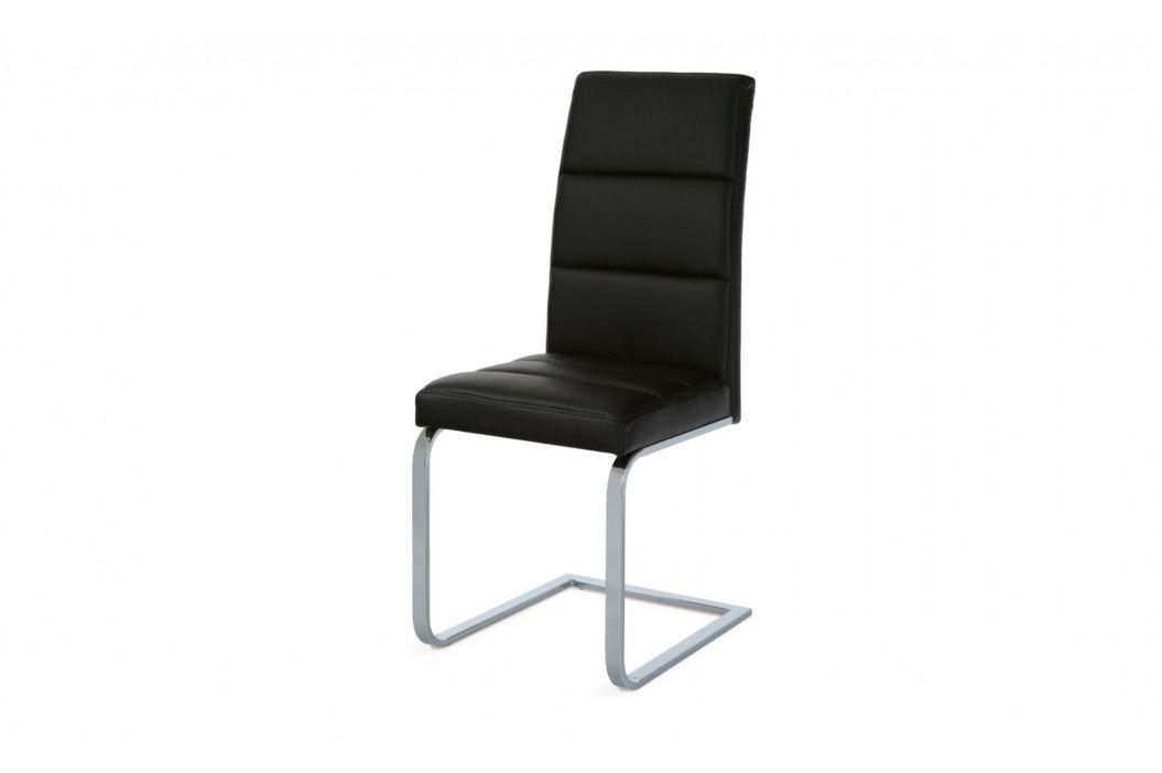 Jídelní židle VIENNA 1 obrázek inspirace
