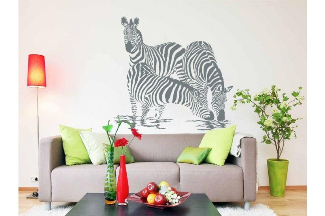 Samolepka na zeď Zebra 003 obrázek inspirace