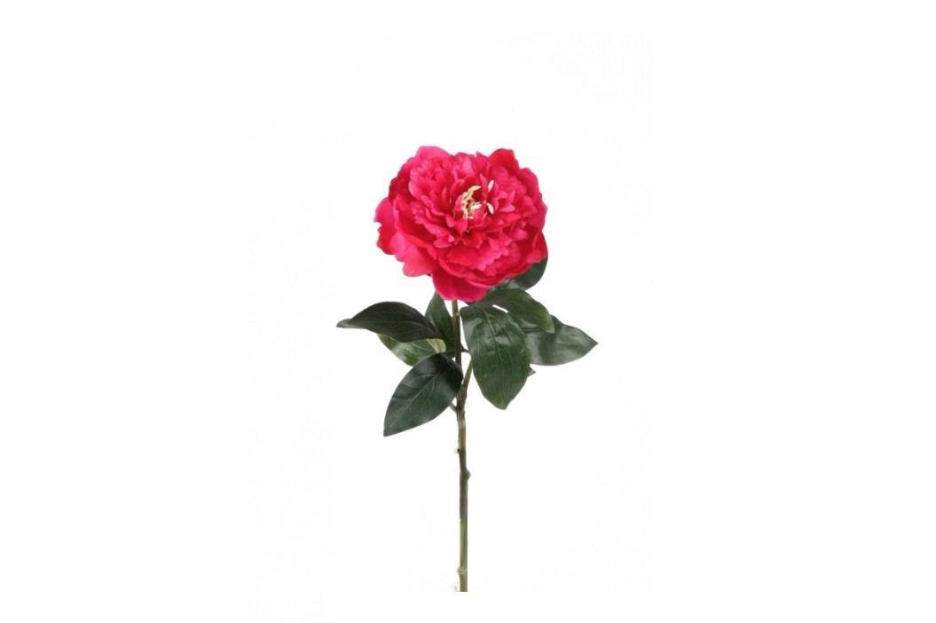 Emerald květiny - Mini povoňka načervenalá, 42cm (416107)
