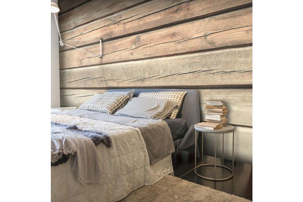 Velkoformátová tapeta Artgeist Old Pine, 400x280cm
