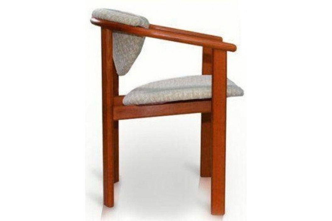 Sedia Židle s područkami F1 obrázek inspirace