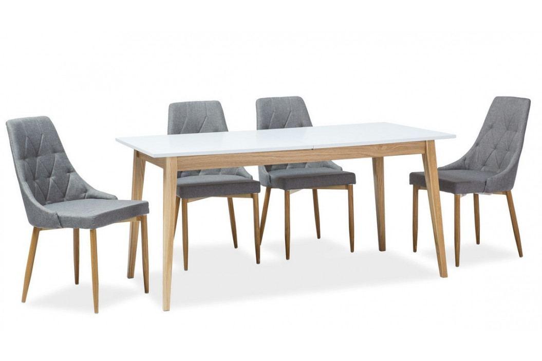 Casarredo Jídelní čalouněná židle TRIX II šedá/dub