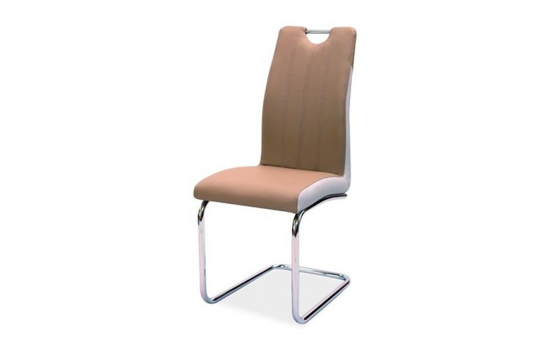 Casarredo Jídelní čalouněná židle H-342 cappuccino/světlá šedá