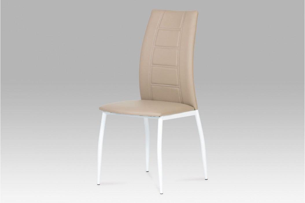 Jídelní židle AC-1195 CAP obrázek inspirace