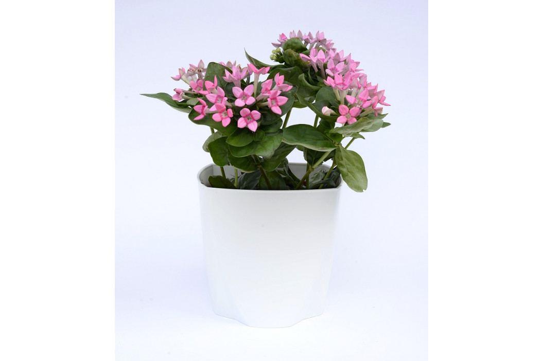 Plastia květináč Camay bílá - průměr 18 cm obrázek inspirace