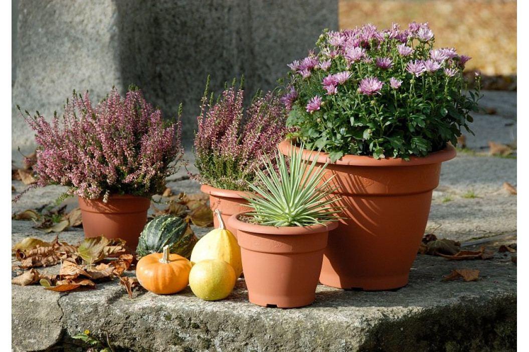 Plastia květináč Muškát terakota - průměr 18 cm