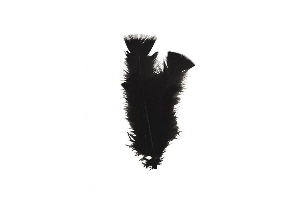 Dekorativní peříčka Black - 10ks, černá barva