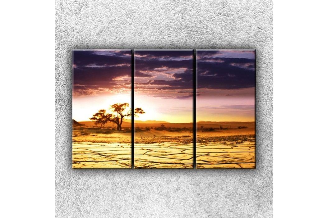 Vyprahlá step 3 (120 x 80 cm) -  Třídílný obraz