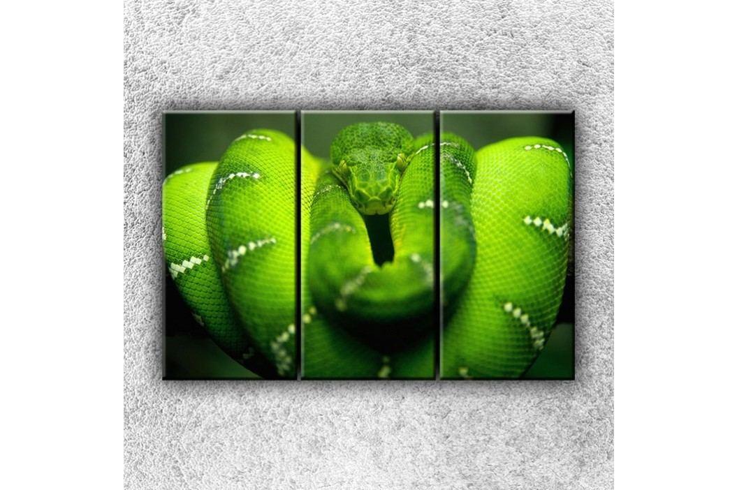Zelený stočený had 3 (120 x 80 cm) -  Třídílný obraz
