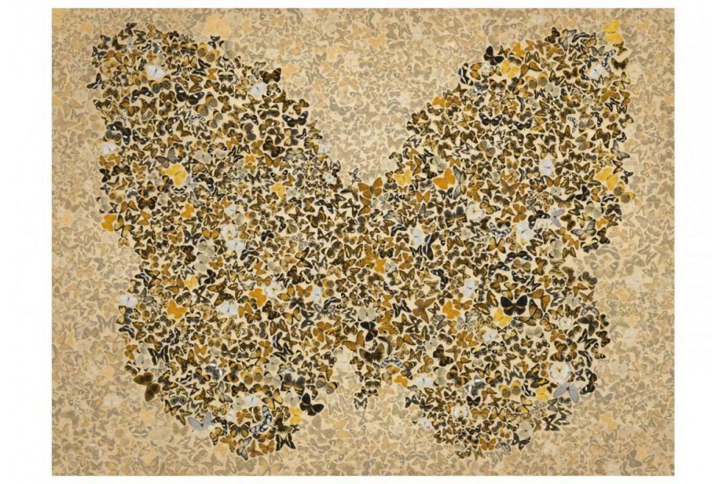 Murando DeLuxe Abstraktní motýl 150x116 cm