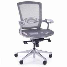 RAUMAN Kancelářská židle Charlotte šedá