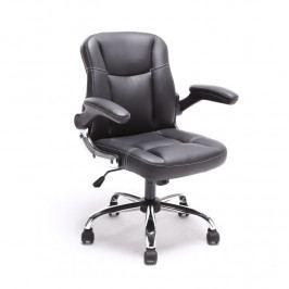 Kancelářské křeslo, ekokůže černá + kovová podstava + plastové područky, GARED