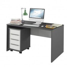 PC stůl, grafit / bílá, Rioma TYP 11