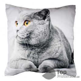 Apex 3D povlak 45x45 - Grey Cat