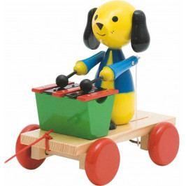Woody Dřevěné hračky Woody - Tahací pes s xylofonem