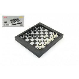 Teddies Cestovní magnetické šachy + dáma společenská hra v krabičce 24x12x4cm