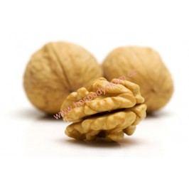 Aroma vlašský ořech 20ml