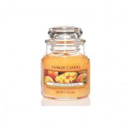 Vonná svíčka Yankee Candle Mango Peach Salsa, malá 16873 Yankee Candle