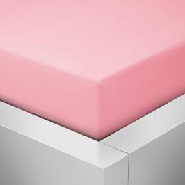 Homeville jersey prostěradlo ELASTIC růžová - 100x220 cm