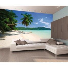 1Wall 1Wall fototapeta Palmová pláž 315x232 cm