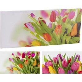 Home colletion maxi obraz s tulipány 78x35 cm - Růžovo-oranžová varianta