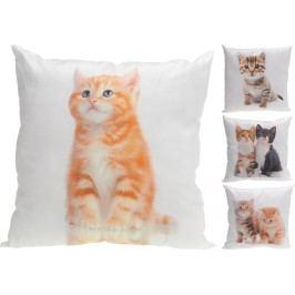 Dekorační polštářek koťátka 45x45 cm - Kotě č.1