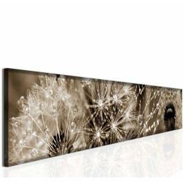 *Panoramatický obraz rosa (180x30 cm) - InSmile ®