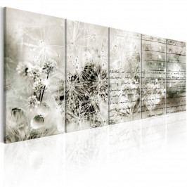 * Šedobílý obraz - tajemný dopis (125x50 cm) - Murando DeLuxe