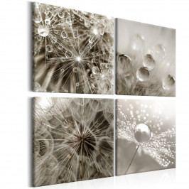 *Čtyřdílný obraz - plačící ráno (80x80 cm) - Murando DeLuxe