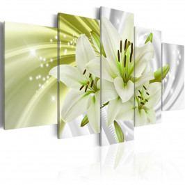 *Obrazy na stěnu - zelená lilie (100x50 cm) - Murando DeLuxe