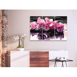 Malování podle čísel - Divoké orchideje (90x60 cm) - Murando DeLuxe