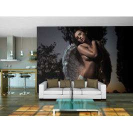 * Anděl i ďábel (250x193 cm) - Murando DeLuxe