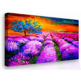 InSmile ® Malovaný obraz - levandulová louka Velikost: 90x60 cm