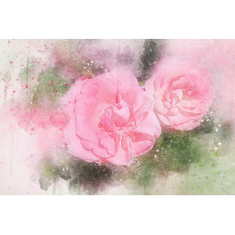 InSmile ® Malovaný obraz - růžové květy Velikost: 120x80 cm
