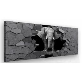 InSmile ® Moderní obraz na zeď - slon v kameni Velikost (šířka x výška): 60x40 cm