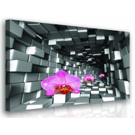 InSmile ® Moderní obraz - orchidej Velikost: 60x60 cm