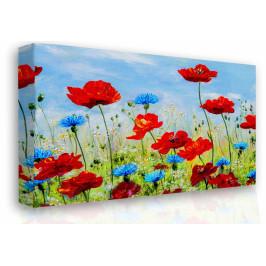 InSmile ® Obraz na plátně - vlčí máky Velikost: 150x100 cm