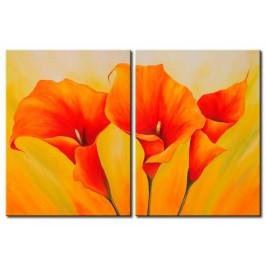 Murando DeLuxe Oranžové květy Velikost: 150x100 cm