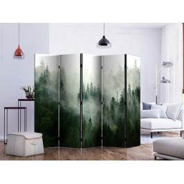 Murando DeLuxe Paraván les v mlze I Velikost: 225x172 cm