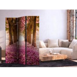 Murando DeLuxe Paraván růžový háj I Velikost: 135x172 cm