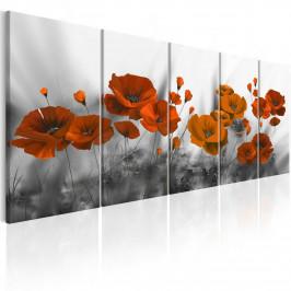 Murando DeLuxe Pětidílný obraz - vlčí máky Velikost: 225x90 cm