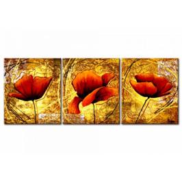 Murando DeLuxe Třídílné obrazy - vlčí máky s bohatou strukturou Velikost: 144x56 cm