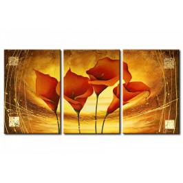 Murando DeLuxe Třídílné obrazy - v pavučině zlata Velikost: 120x60 cm